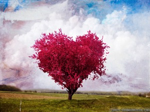 love-heart-tree-shaped-315570